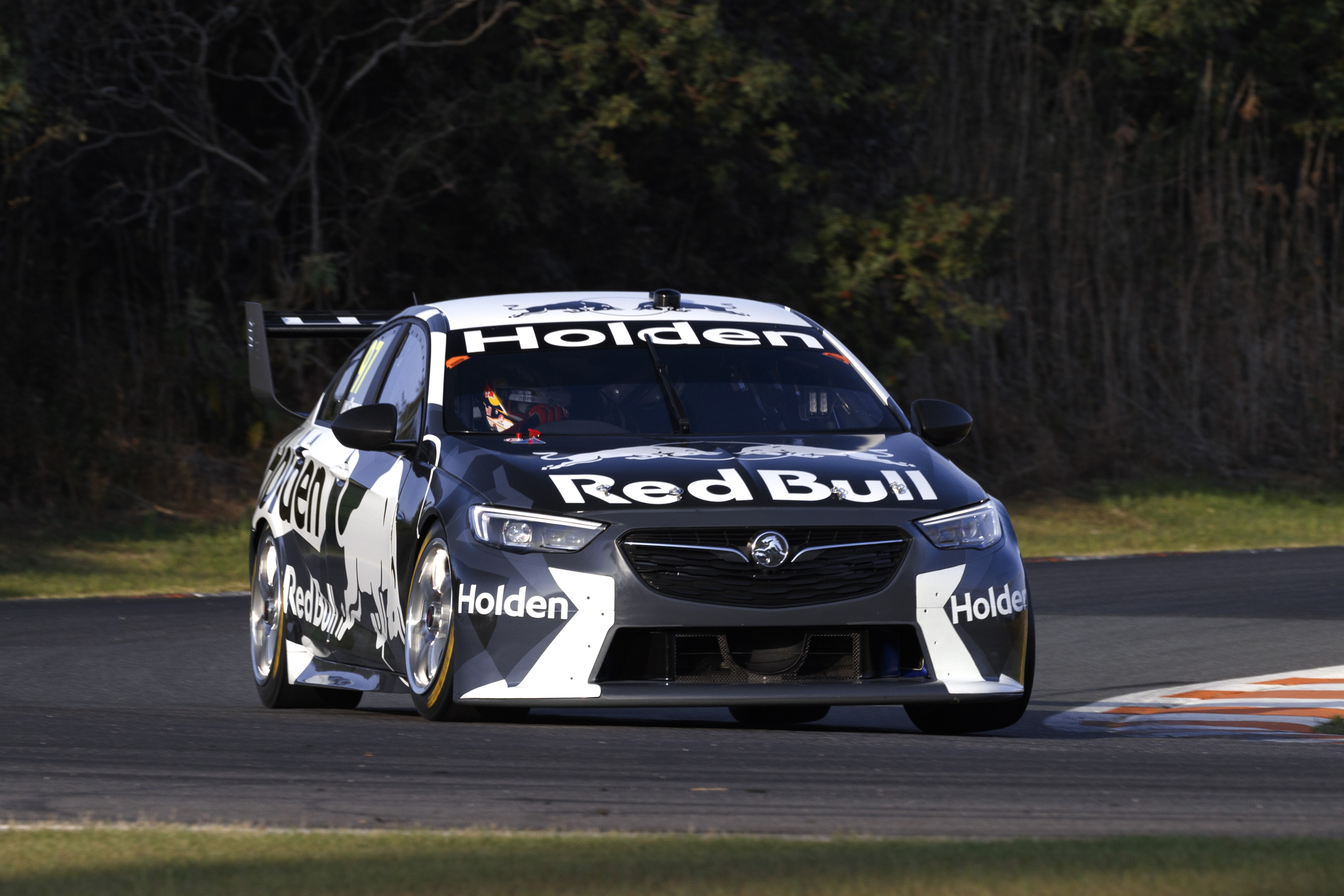 POLL: Are you a fan of the new ZB Commodore? - Speedcafe